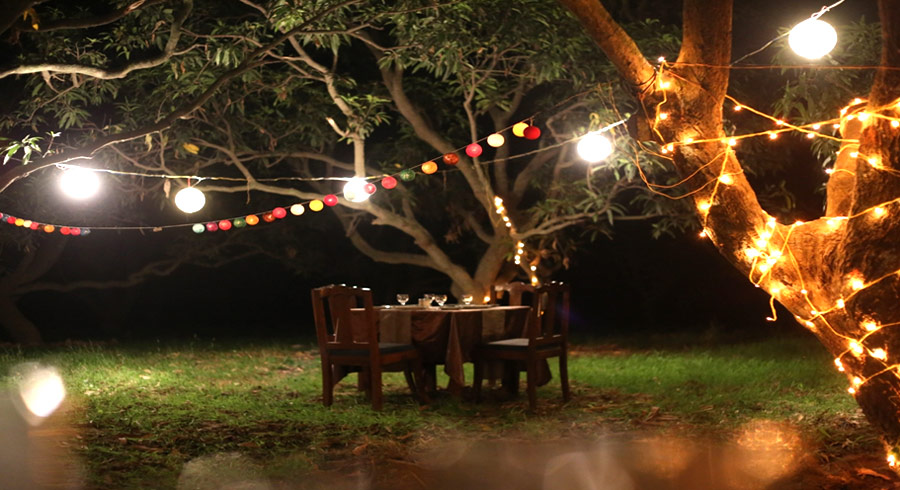 Private Dinning in the Mango Orchards